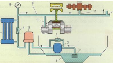 Câu hỏi 13 trang 164 SGK Công nghệ 11