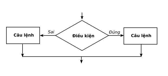 Hình 13: Cấu trúc rẽ nhánh dạng đủ
