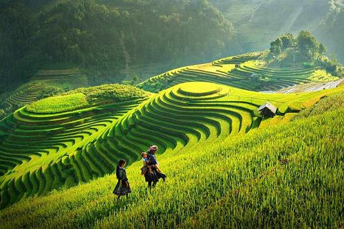 Bức tranh tứ bình trong bài thơ Việt Bắc - Tố Hữu